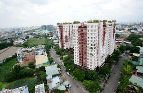 Can canh nhung can ho chi rong 20 m2 o Sai Gon - Anh 1