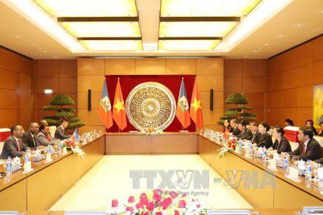 Chu tich Quoc hoi Nguyen Thi Kim Ngan hoi dam voi Chu tich Thuong vien Cong hoa Haiti - Anh 2