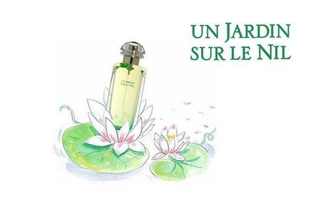 Hermes Un jardin: An tinh mui huong khi xa vong tay chang - Anh 6
