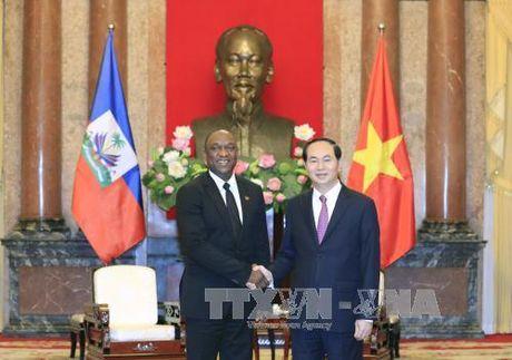 Chu tich nuoc Tran Dai Quang tiep Chu tich Thuong vien Cong hoa Haiti - Anh 1