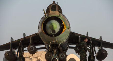 Quan doi Syria giai cuu thanh cong phi cong Su-22 bi My ban ha - Anh 1