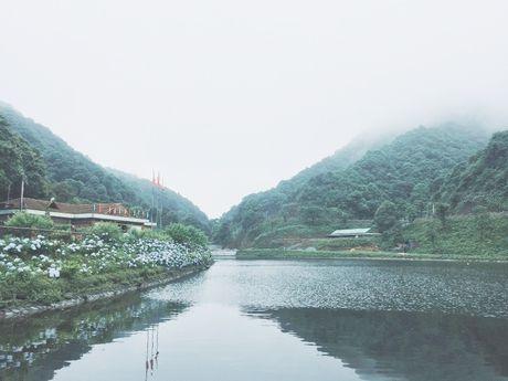 Cao Bang: Ngam vuon hoa Cam tu cau ruc ro tren rung Phia Den - Anh 6