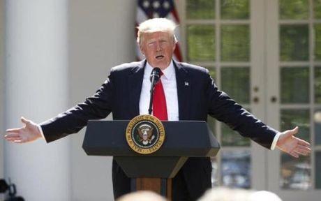 Tong thong My Donald Trump gap CEO cua cac hang cong nghe hang dau - Anh 1