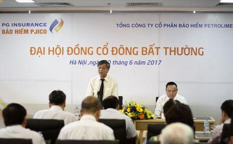 PJICO thong qua tang von dieu le len 887 ty dong - Anh 1