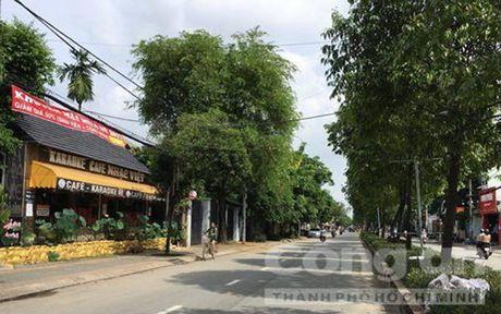 Truy lung ke sat nhan truoc quan karaoke Nhac Viet - Anh 1