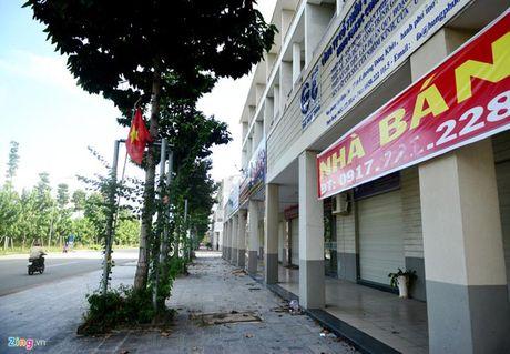 Can canh thanh pho 1.000 ha nhieu nam hoang vang o Binh Duong - Anh 9
