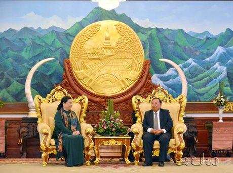 Lanh dao cap cao Lao tiep Pho chu tich Quoc hoi Tong Thi Phong - Anh 1