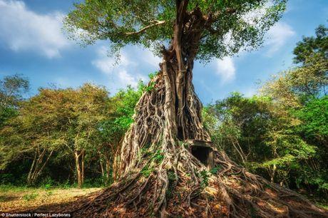 Chiem nguong ve dep nhung di san the gioi moi duoc UNESCO cong nhan - Anh 1