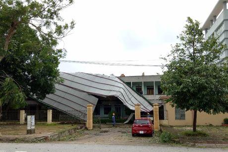 TP Vinh sau bao: Hang ngan cay xanh bat goc tren cac tuyen pho - Anh 10