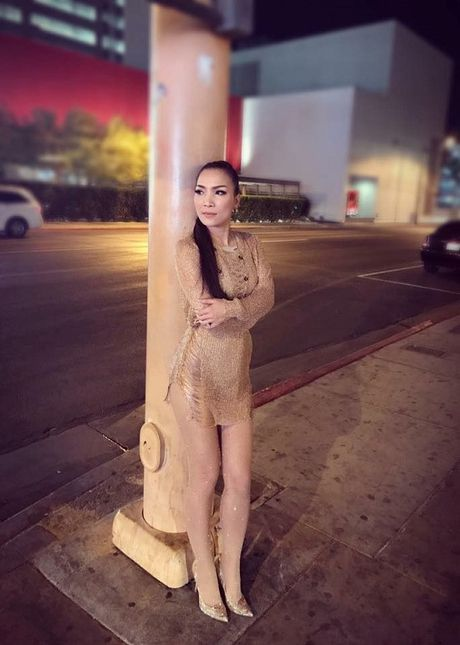 Chuyen showbiz: Dam Vinh Hung lo 'anh nong' - Anh 12