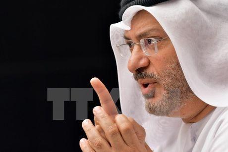 Qatar tin tuong Washington Post ve cao buoc UAE tan cong mang - Anh 1