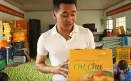 Xoai Cat Chu xuat sang Nhat 100.000 dong/qua duoc trong the nao? - Anh 12