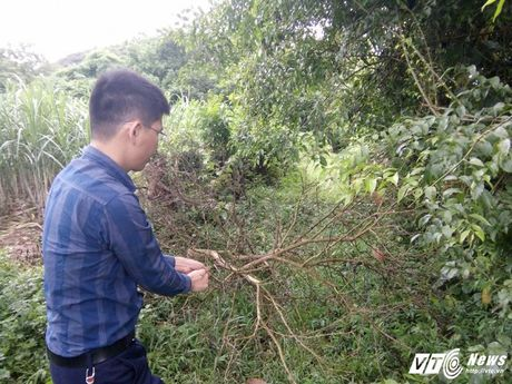 Tan mat nhung chuyen ky di chua tung co trong ngoi nha la lung o Thanh Hoa - Anh 6