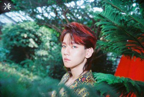 EXO tung MV, chinh thuc tro lai duong dua Kpop - Anh 3