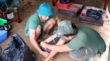 Phat hien 22 hai cot liet sy tai Binh Duong - Anh 8