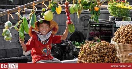 Trung Quoc van la thi truong nhap nhieu nong san Viet Nam nhat 6 thang dau nam 2017 - Anh 1