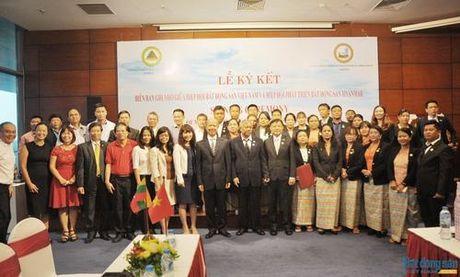 VNREA tang cuong hop tac voi cong dong doanh nghiep bat dong san Myanmar - Anh 8