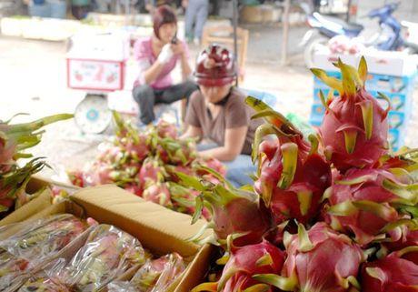 GDP 6 thang cuoi nam ky vong vao xuat khau nong san - Anh 1