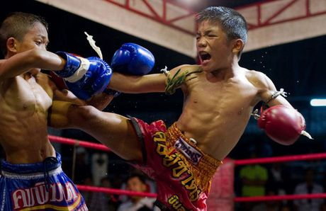 Uoc mo doi doi bang vo muay Thai - Anh 1