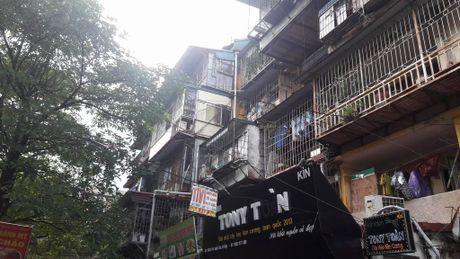 'Chuong cop' giang khap Thu do: Chuyen gia hien ke phong chay - Anh 2