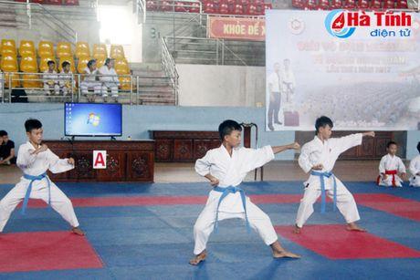 Khai mac Giai Vo dich Karatedo Vo duong Hung Quan - Anh 1