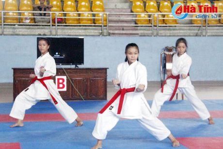 Khai mac Giai Vo dich Karatedo Vo duong Hung Quan - Anh 2