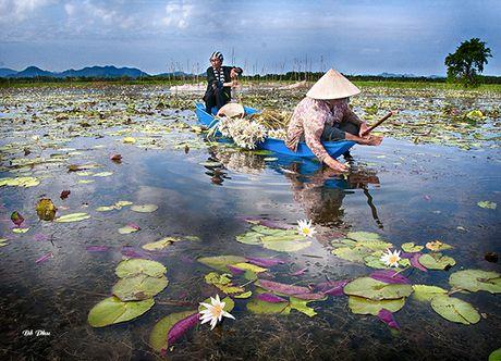 'Thang Bay nuoc nhay khoi bo ' - Anh 1