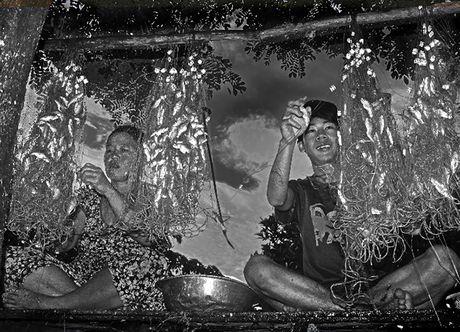 'Thang Bay nuoc nhay khoi bo ' - Anh 2