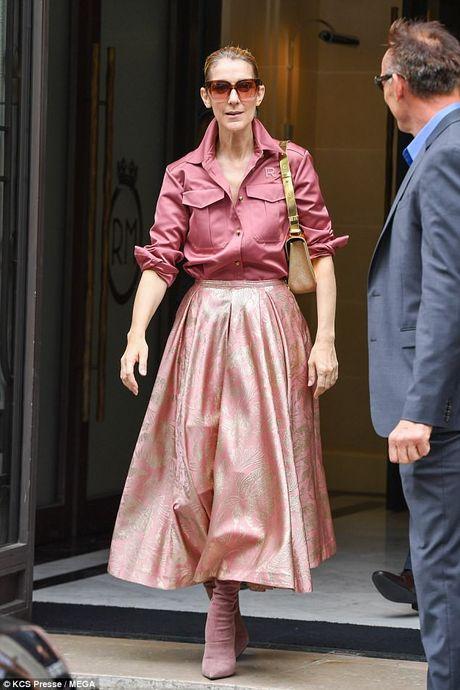 Celine Dion tuoi 49 van tu tin dien ca 'cay hong' - Anh 1