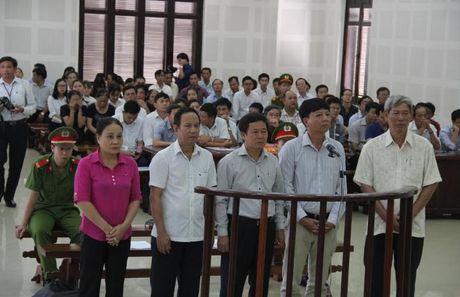 Vu an Cty Ngoc Hung buon lau hon 500m3 go trac: Cac bi cao tiep tuc khang dinh vo toi - Anh 1