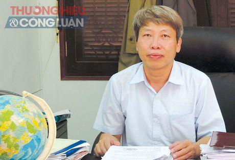Huyen Nho Quan (Ninh Binh): Hieu qua tu mo hinh Tich tu ruong dat - Anh 1