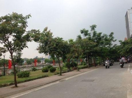 Ha Noi co them pho di bo Trinh Cong Son - Anh 1