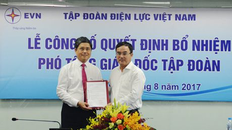 Tap doan Dien luc co Pho Tong Giam doc moi - Anh 1
