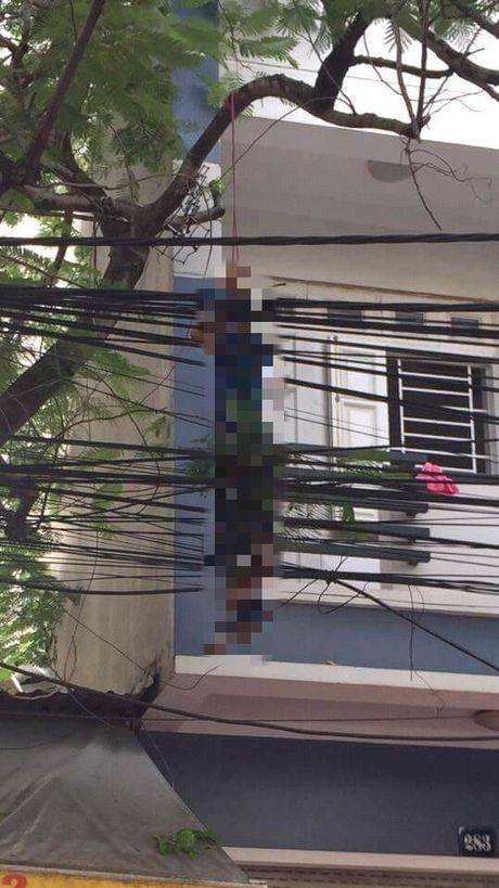 Hai Phong: Bang hoang biet chong tu vong trong tu the treo co tren cay phuong - Anh 1