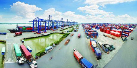 Ba Ria - Vung Tau: Dong y chu truong xay kho bai logistics - Anh 1