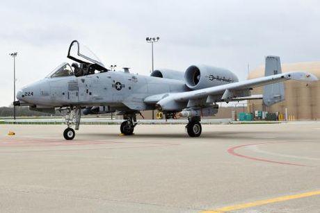 My dau dau tim cach thay the A-10 Thunderbolt - Anh 1