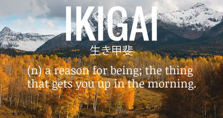 'Ikigai' mot khai niem hanh phuc ki la nhung day tinh nhan van cua nguoi Nhat Ban - Anh 1