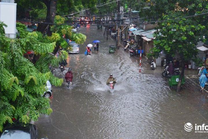 Hà Nội: Mưa cực lớn gây ngập nặng, nhiều cây cối đổ gãy trên đường