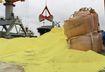 Hàng vạn tấn lưu huỳnh 'đày giời', Cảng vụ Hải Phòng họp khẩn