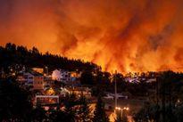 Cháy rừng dữ dội ở Bồ Đào Nha, 24 người chết