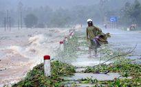 Hình ảnh bão số 10 tại Hà Tĩnh và Quảng Bình