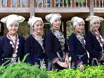 Ngày hội Văn hóa dân tộc Dao toàn quốc tổ chức tại Tuyên Quang