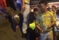Người đàn ông thả rông chó to giữa phố Hàng Mã, khi bị nhắc nhở còn thách thức