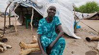 Biến đổi khí hậu và chiến tranh đe dọa an ninh lương thực