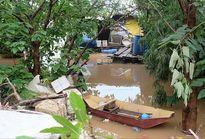 Xóm nổi sông Hồng tiêu điều mùa nước lũ