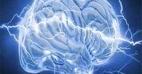 Những hiểu biết của con người về bộ não là sai lầm?