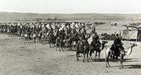 15 loài vật làm nên lịch sử trong các cuộc chiến tranh