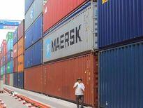 Vụ mất tích 213 container: Phó Thủ tướng yêu cầu xử lý