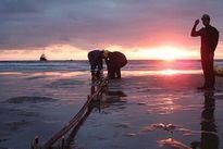 Sự cố trên tuyến cáp quang biển AAG sẽ được xử lý xong vào ngày 26/10