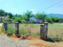 Bình Định: Đề nghị kiểm điểm Bí thư xã vì 'quên' nộp tiền sử dụng đất